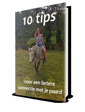 eBook: 10 tips voor een betere connectie voor je paard